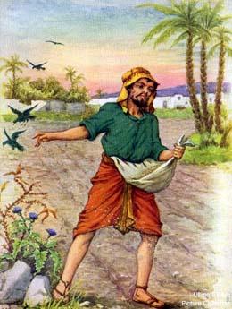 SUY NIỆM CHÚA NHẬT 11 THƯỜNG NIÊN - B