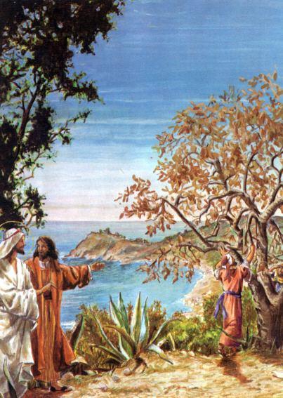 Lời Chúa - Chúa Nhật  III Mùa Chay (15/03/2020)