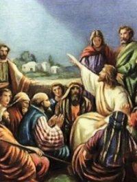 Lời Chúa thứ năm tuần XXXII thường niên (14/11/2019)
