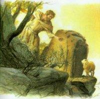 Lời Chúa thứ ba tuần II Mùa Vọng (12/12/2017)