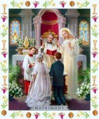 Bộ Giáo Lý Đức Tin Lên Tiếng Về Việc Rước Lễ Của Người Ly Dị Tái Hôn