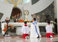 Giáo xứ Tân Thái Sơn Chầu Lượt Thay Giáo Phận (08/02/2015