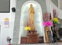 Lễ Kính Đức Mẹ Fatima (trưa 13/02/2014)