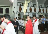Gx Tân Thái Sơn: Lễ Lá 2015-Tưởng Niệm Cuộc Thương Khó Của Chúa