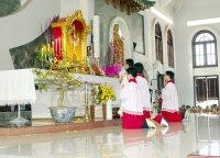 Giáo xứ Tân Thái Sơn Chầu Lượt thay Giáo Phận.