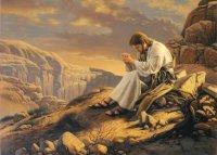 Lời Chúa thứ hai tuần VII thường niên (25/02/2019)